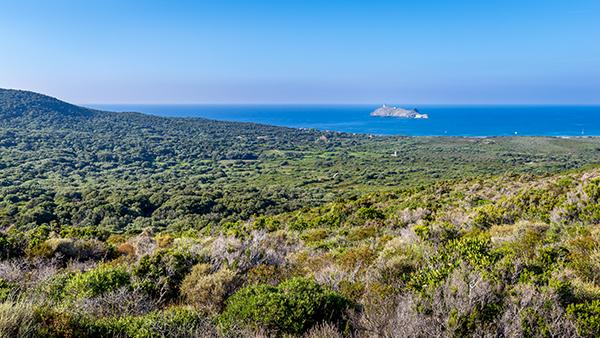 Cap Corse, Corse, Sentier des douaniers de Macinaggio